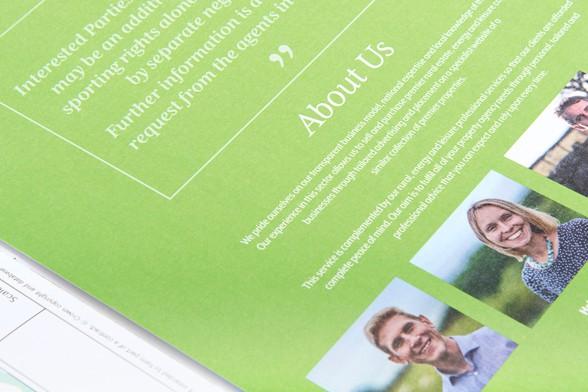 baileysheaderbaileys_and_Partners_design_for_print_DesignPit_6