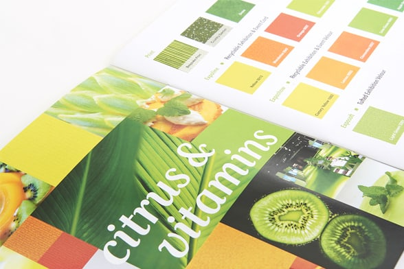 sommer_brochure_design_DesignPit4